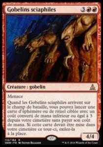Gebelins sciaphiles